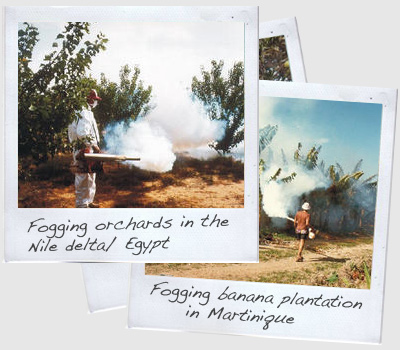 A selection of Polaroids while using thermal fogging machines