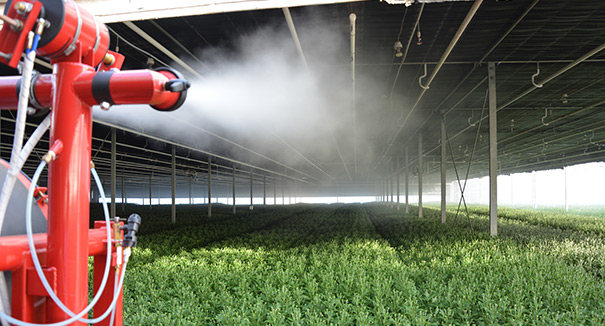 showcasing pulsFOG cold Fogger TracFOG 400F in a greenhouse